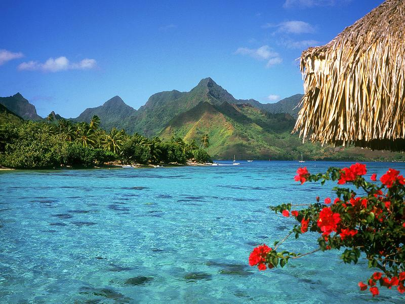 POLYNESIA CRUISES OFFERS PAUL GAUGUIN LUXURY VACATIONS VIAJES DE NOVIOS OFERTA VIAJES EXCLUSIVOS