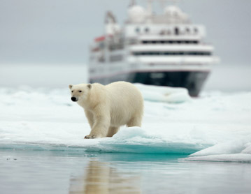 OSO POLAR SILVERSEA EXPEDITIONS CRUCEROS DE LUJO SVALBARD POLO NORTE